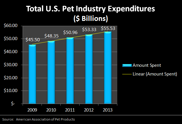 Pet Business Ideas Trends Are on The Rise for Today's