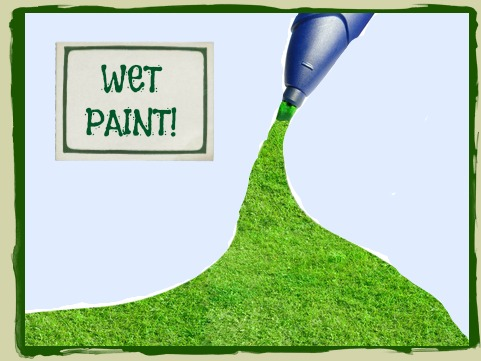 Lawn Paint Service With Sign